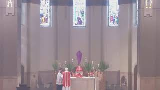 Holy Mass - Palm Sunday, March 28, 2021