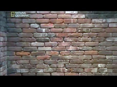 Science of Brick
