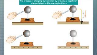 Charging an Electroscope by Induction