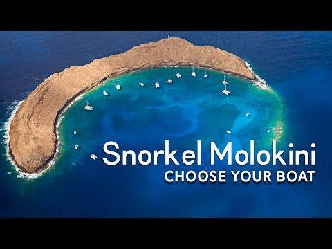 Watch This Before Choosing Your Molokini Snorkel Trip on Maui! | Maui Activities | Maui, Hawaii