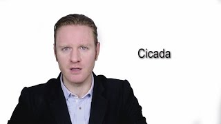 Cicada - Meaning   Pronunciation    Word Wor(l)d - Audio Video Dictionary