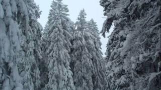 Ambiente Winterlandschaften