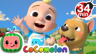 JJ Song + More Nursery Rhymes & Kids Songs - CoCoMelon