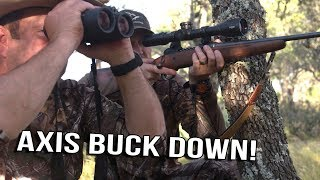 Just The Hunt- SemiLive Hunting- Axis Buck Down