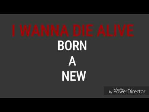 Volmax - It's Alright (lyric video)
