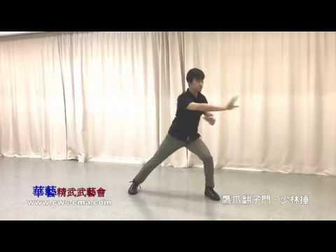 鷹爪翻子門-少林捶 - YouTube