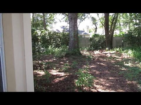 Homes For Rent (904) 281-2100 Jacksonville, Florida - Mandarin Lakes