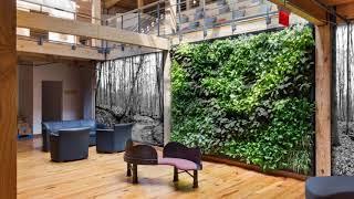 California Plant Walls: Make a Vertical Garden out of your Sunny Spot