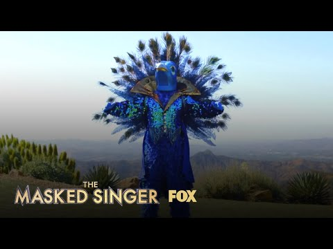 The Clues: Peacock   Season 1 Ep. 6   THE MASKED SINGER