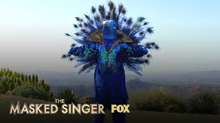 The Clues: Peacock | Season 1 Ep. 6 | THE MASKED SINGER
