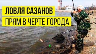 Улетная рыбалка на Дальнем Востоке Рыбалка на сазана леща и чебака