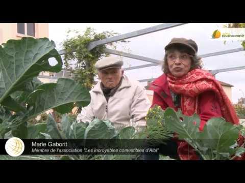 Quel avenir pour une agriculture locale et biologique en France ?