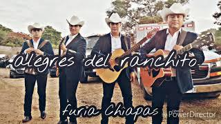 El Toro Viejo - Pasito Perron | Alegres Del Ranchito En Vivo Tuxtla Gutiérrez Chiapas México 2019