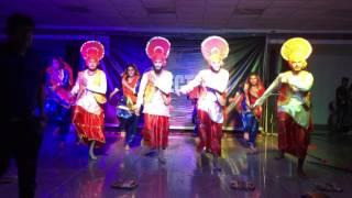Bhangra Stunners/D.A.V University/Winners of SPECTRUM 2K15