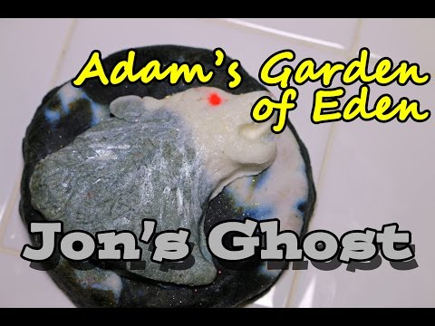 adam's-garden-of-eden---jon's-ghost-bubble-bar---demo---review
