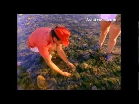 Great Barrier Reef, Australia by Asiatravel.com
