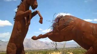 Horse Sculptures Borrego Springs CA