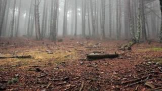 The Burning_Nightside Wanderer - Part 4