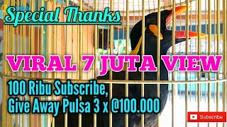 Video Viral Burung Beo Menirukan Suara Suara Aneh | Kicau Mania | Burung Langka Mahal | Lomba Burung download MP3, 3GP, MP4, WEBM, AVI, FLV Juni 2018