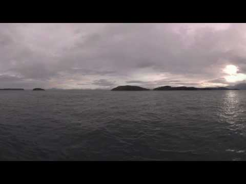 360 Whale Watching in Johnstone Strait, Vancouver Island North.