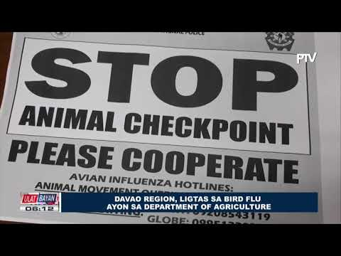 Davao Region, ligtas sa Bird Flu ayon sa Department of Agriculture