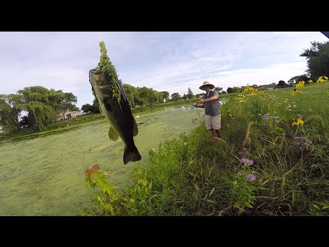 Frog Fishing In The Grass.. Ft. HECZWE & LunkersTV