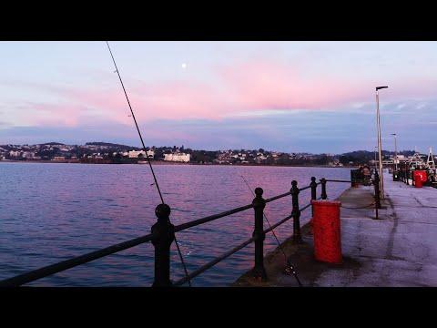 Torquay Harbour Fishing
