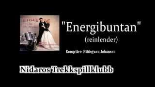 Nidaros Trekkspillklubb - Energibuntan