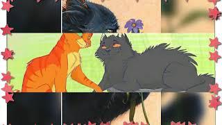 Мои любимые персонажи котов воителей