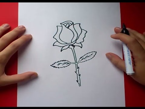 Como dibujar una rosa paso a paso 3  How to draw a rose 3  YouTube