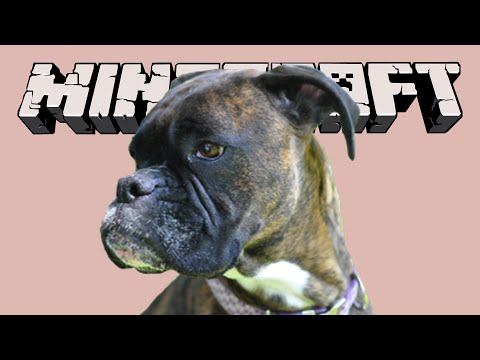 Minecraft Adventure Map •SAVE THE DOG • Half Minute Adventure