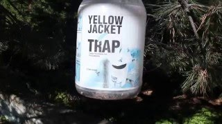 Yellow Jacket trap - the needless killing of insects continues...