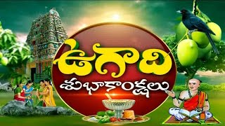 Telugu Festival Ugadi | Celebrated Grandly | in Various Places of State