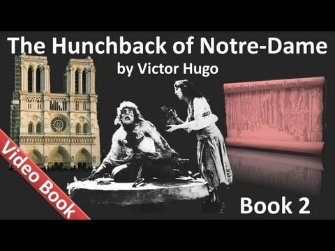Book 02 - The Hunchback of Notre Dame Audiobook by Victor Hu