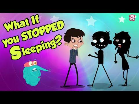 What If You Stopped SLEEPING?   Dr Binocs Show   Peekaboo Kid