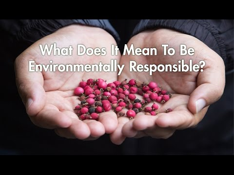 Part 1: What does it mean to be environmentally responsible?