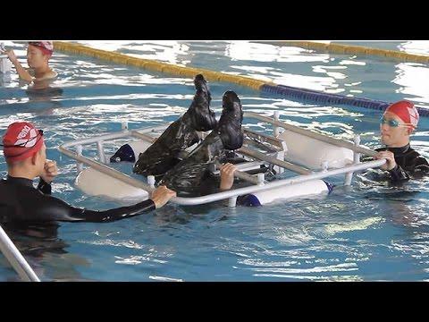 陸上自衛隊 相浦駐屯地で水陸機動団創設に向けた訓練「水陸両用基本訓練過程」を公開