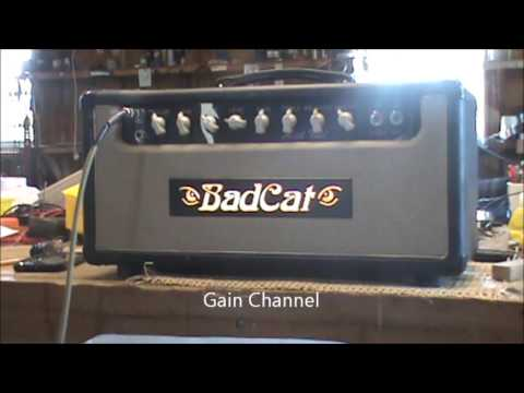 Bad Cat 'Hot Cat 30' Amplifier Serviced by Tennessee Amp ...
