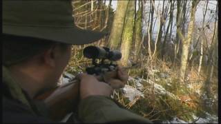 Repeat youtube video Wild Boar Hunting 2016