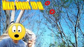 Download lagu Mikat Burung Mantenan pakai Mp3 MP3