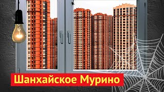 Шанхай: как китайцы строят новые дома