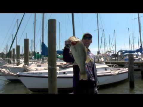 2016 Classic LIVE Promo #1 Martens Winning Fish