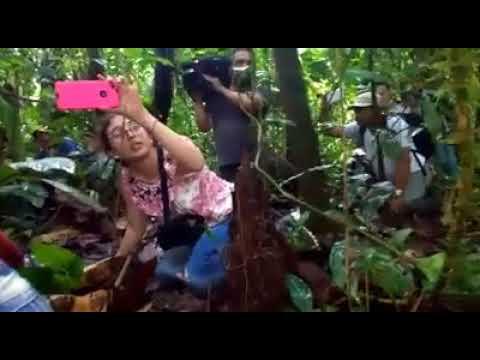 Comisión de verificación en Tumaco es recibida con tiros al aire