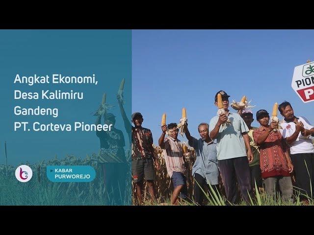 Angkat Ekonomi, Desa Kalimiru Gandeng PT. Corteva Pioneer