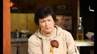 все, что надо знать о грибах
