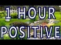 """""""Positive Outlook""""   Uplifting Meditational Music for Wellbeing and Restore Your Spirit"""