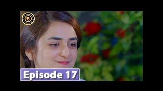 Pukaar Episode 17 - Top Pakistani Drama