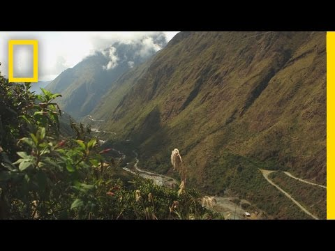 World's Most Dangerous Road? | National Geographic