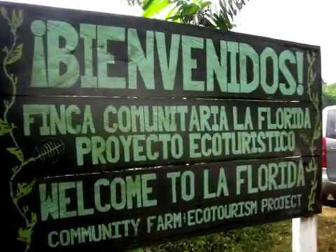 Fair Trade in Guatemala.m4v