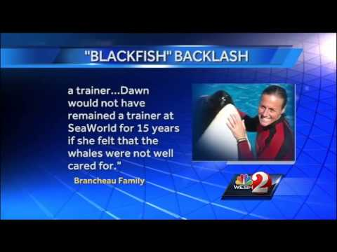 SeaWorld, family of trainer killed respond to 'Blackfish' documentary